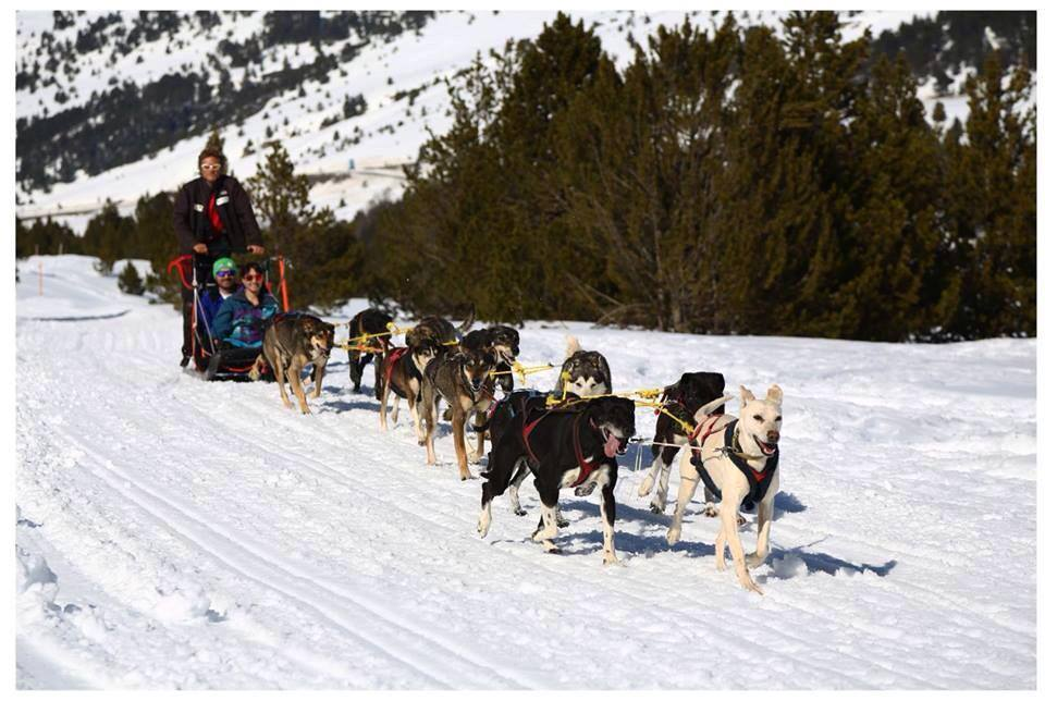 Mushing en Grand Valira (Andorra)