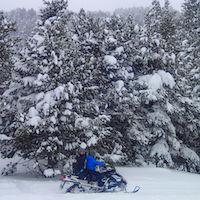 Motos de nieve