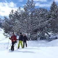 Raquetes de neu