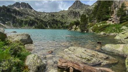 Excursión Parque Nacional de Aigüestortes i Estany de Sant Maurici ½ Día