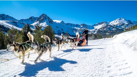 MUSHING - PACK FAMILIA 2 ADULTOS + 1 NIÑO 2KM