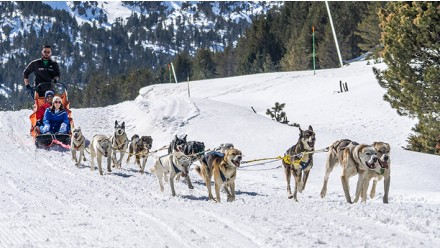 MUSHING - PASEO 5KM