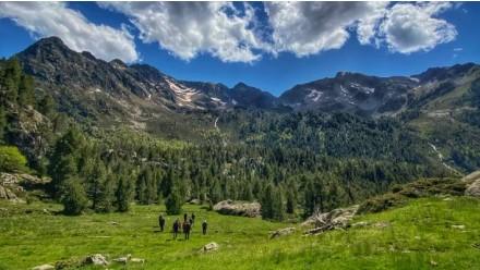 Excursión Parque Natural Alto Pirineo 3H