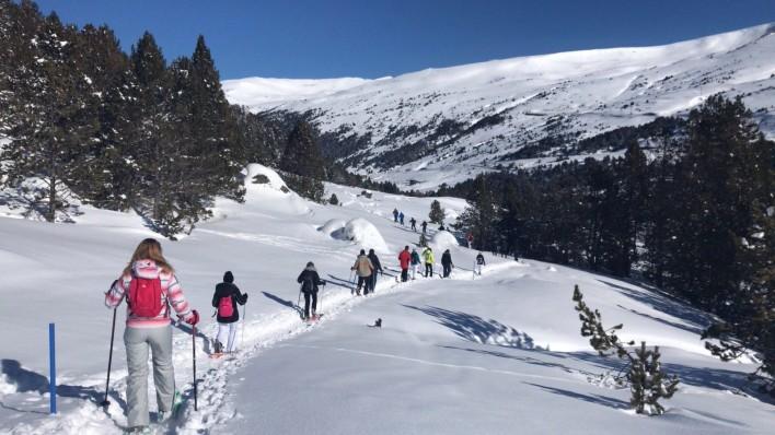 SNOWSHOES EXCURSION 3H