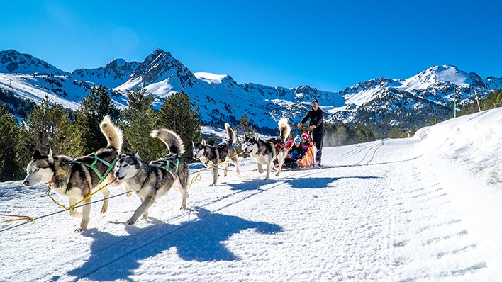 SLED DOGS RIDE - FAMILY PLAN 2 ADULTS AND 1 KID 2KM