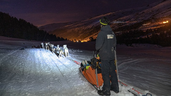 SLED DOGS NIGHT RIDE 10KM + DINNER IN A LUXURY RESTAURANT