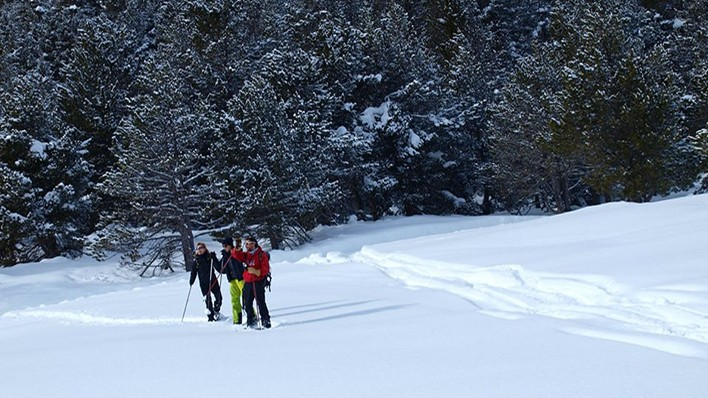 SNOWSHOES EXCURSION 2H